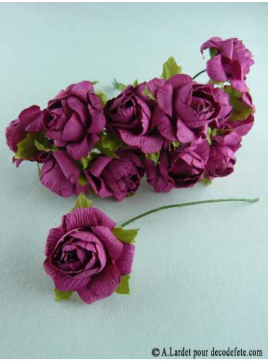 12 Roses ouvertes fushia