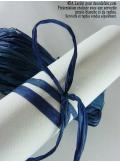 50g Véritable raphia bleu