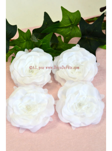 4 Roses sauvages blanches