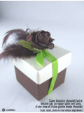 12 Roses ouvertes chocolat