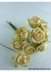 12 Roses ouvertes ivoire