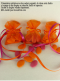 10 Sachets organdi orange