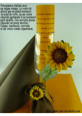 5 Menus calque orange