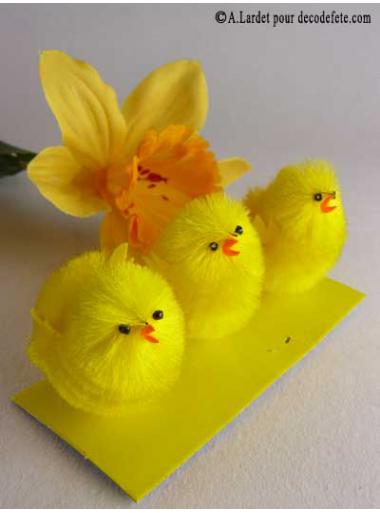6 petits poussins jaunes