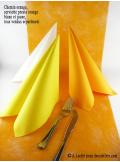 10M Chemin de table SUBLIM orange