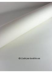 10M Nappe jetable presto blanc
