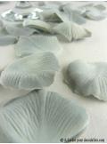 55 Pétales de rose gris