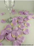 55 Pétales de rose parme