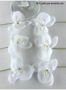 6 Petites Orchidées PERLE blanches