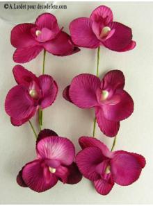 6 Petites Orchidées PERLE fushia