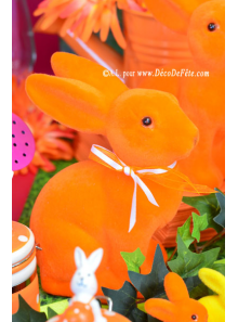 1 Lapin Flocké orange