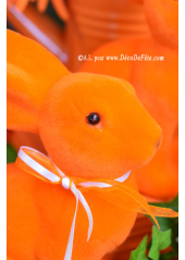 1 Lapin Velours orange