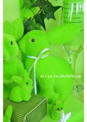 1 Lapin Velours vert