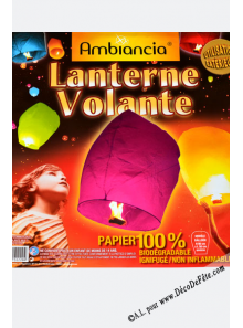 1 lanterne celeste blanche