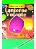 1 lanterne volante vert