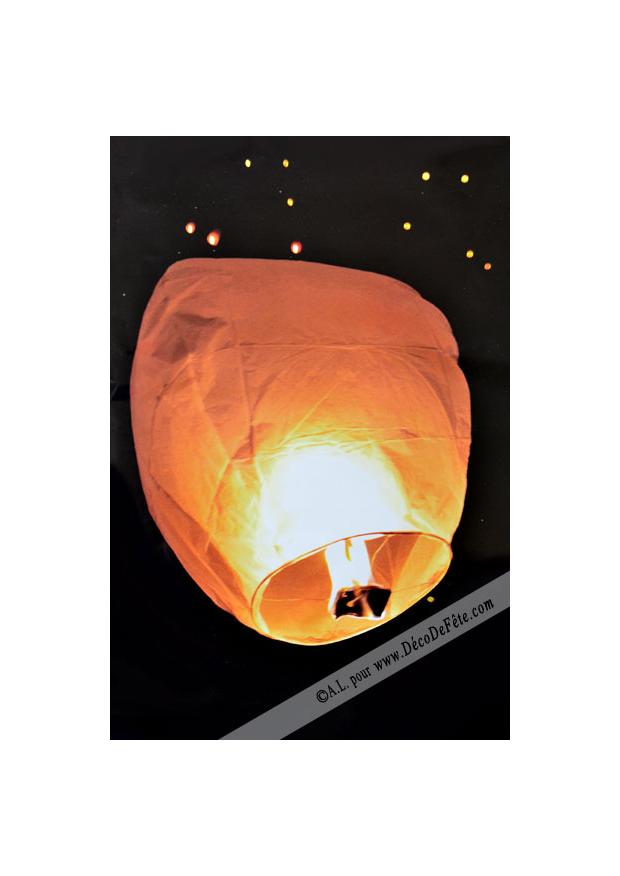 1 lanterne volante fushia for Fushia exterieur