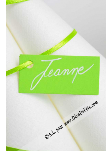 12 Etiquettes rectangle vert anis