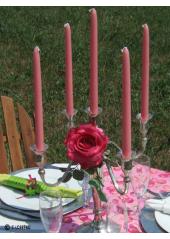 12 Bougies flambeau rose
