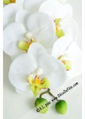 1 Branche d'orchidées CHENG coeur vert anis