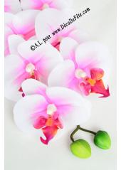 1 Branche d'orchidées CHENG coeur fushia