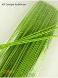 130G Batonnets bambou vert anis