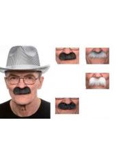 1 Moustache épaisse grise