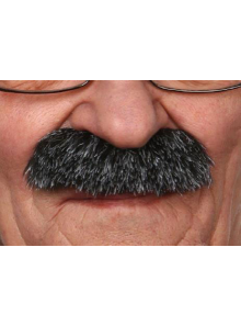 1 Moustache épaisse poivre & sel