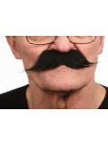 1 Moustache dandy