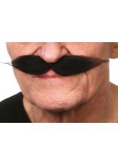 1 Moustache polonaise noire