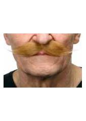 1 Moustache polonaise blonde