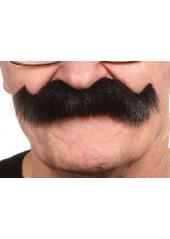 1 Moustache en pointe