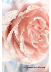 1 Rose givrée Sissi rose