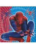 20 Serviettes Anniversaire Spiderman