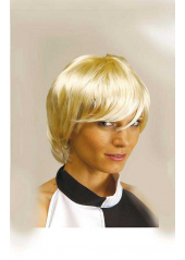 1 Perruque Harry Blond