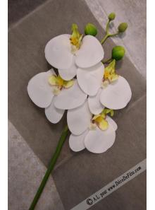1 MINI Branche d'orchidées anis