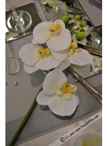 1 MINI Branche d'orchidée blanc