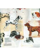 20 Serviettes imprimées chiens