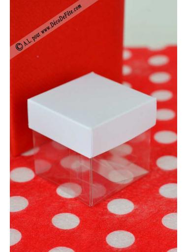 10 petits cubes transparent et blanc
