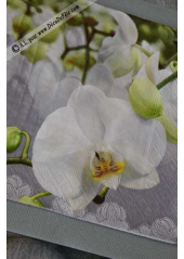 20 Serviettes Fleur d'Orchidée Blanche