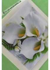 20 Serviettes imprimées Arome