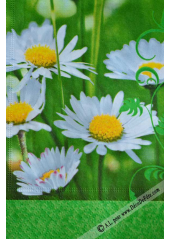 20 Serviettes Imprimées Marguerite