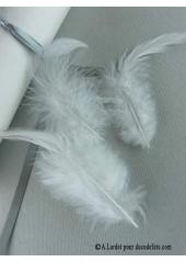 2g Plume mode blanc