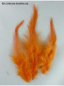2g Plume mode orange