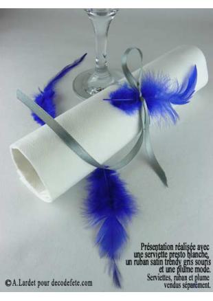 2g plume mode bleu roy deco plumes. Black Bedroom Furniture Sets. Home Design Ideas