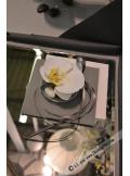 8 Orchidées LING blanc