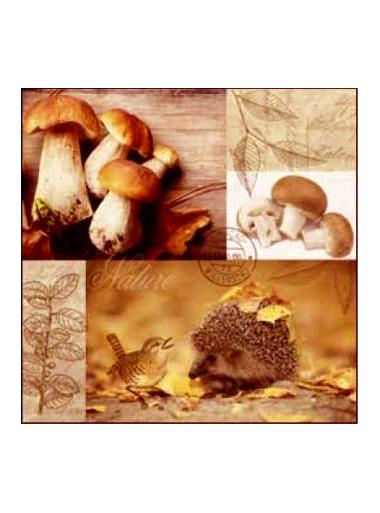 20 Serviettes sous bois d'automne