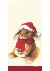 10 Mouchoirs Lapin & Hibou de Noel