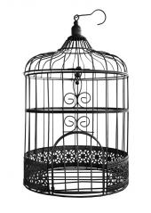 1 cage à oiseaux métal NOIR