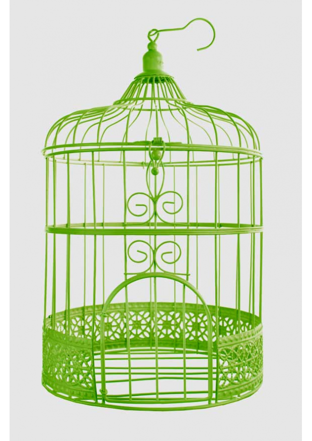 1 cage a oiseaux ani31cm. Black Bedroom Furniture Sets. Home Design Ideas