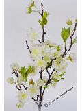 1 branche de cerisier blanc